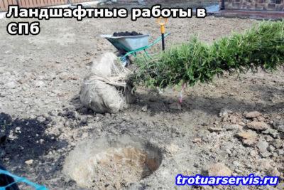 Ландшафтные работы в СПб