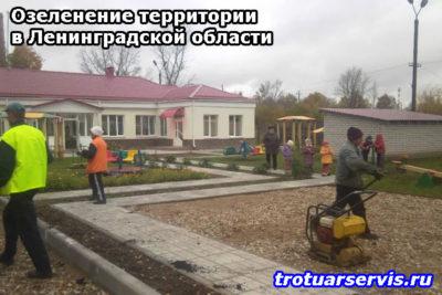 Озеленение территории в Ленинградской области