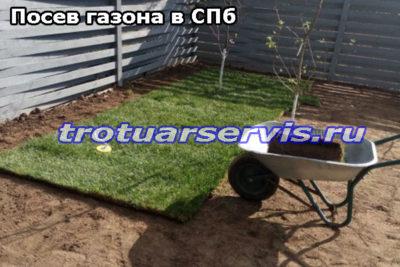 Посев газона в Ленинградской области