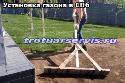 Установка газона в СПб