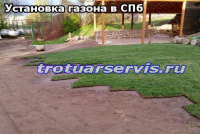 Установка газона в Санкт-Петербурге
