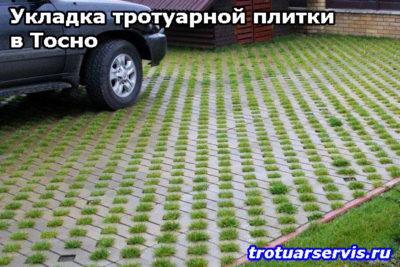 Укладка тротуарной плитки в Тосно