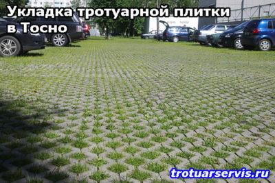 Тротуарная плитка Эко в Тосно