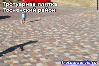 Тротуарная плитка Тосненский район