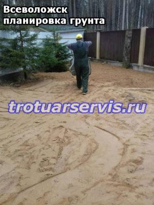 Трамбовка грунта на дачном участке (Всеволожск, Ленинградская область)