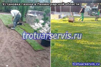 Озеленение территории (Ленинградская область, СПб)