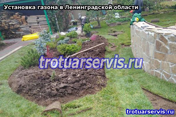 Установка газона в Ленинградской области
